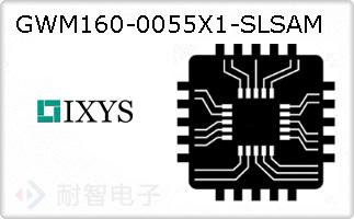 GWM160-0055X1-SLSAM