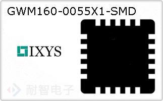 GWM160-0055X1-SMD